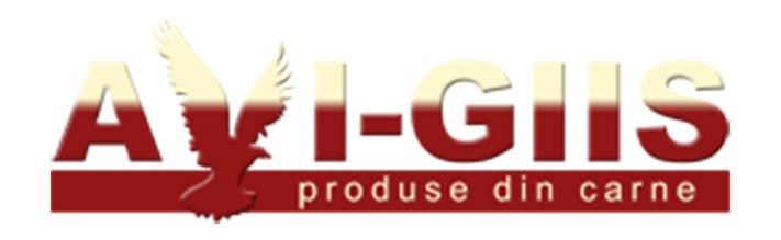 Avi-Giis logo